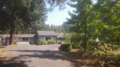 Single Family Home For Sale: 375 Fir Canyon Road