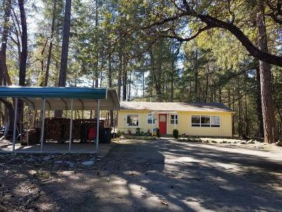 Grants Pass Single Family Home For Sale: 252 Ewe Creek Road