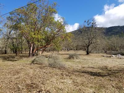 Merlin, Sunny Valley, Wimer, Rogue River, Wilderville, Grants Pass Residential Lots & Land For Sale: 5001 Cloverlawn Drive
