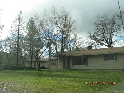 Jackson County, Josephine County Single Family Home For Sale: 11515 Dennis Road