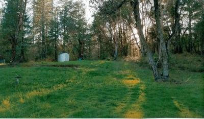 Josephine County Residential Lots & Land For Sale: 200 Bolt Mountain Road