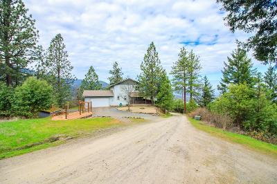 Talent Single Family Home For Sale: 8907 Yank Gulch Road