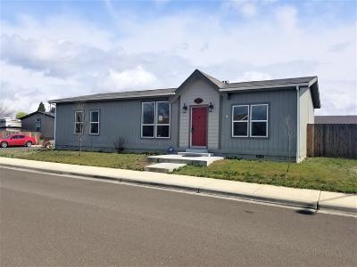 White City Single Family Home For Sale: 7448 Gladstone Avenue
