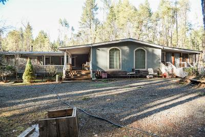 Jackson County, Josephine County Single Family Home For Sale: 448 Mesa Verde Drive