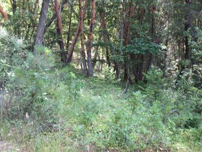 Josephine County Residential Lots & Land For Sale: 1903 Shadow Mountain T/L 1903 Way