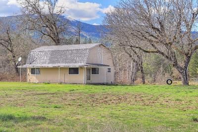 Rogue River Single Family Home For Sale: 7221 E Evans Creek Road