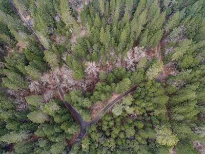 Josephine County Residential Lots & Land For Sale: 107 Rusty Spur