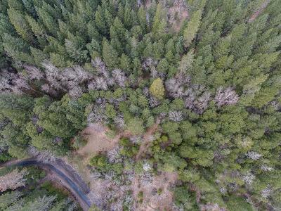 Josephine County Residential Lots & Land For Sale: Rusty Spur Tax Lot 103
