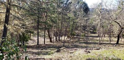 Josephine County Residential Lots & Land For Sale: Robertson Bridge,  TL 2100 Road