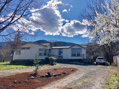 Ashland Single Family Home For Sale: 630 Reiten Drive