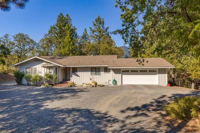 Single Family Home For Sale: 1231 Upper Applegate Road