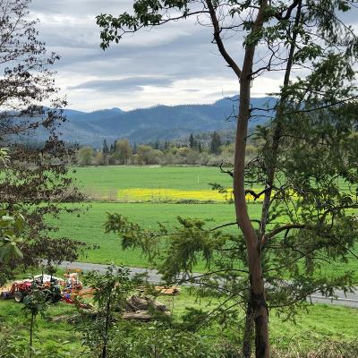 Josephine County Residential Lots & Land For Sale: 11524 N Applegate Road