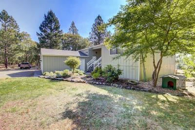 Grants Pass Single Family Home For Sale: 515 Pavillian Drive