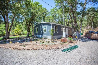 Trail Single Family Home For Sale: 533 Lodge Road