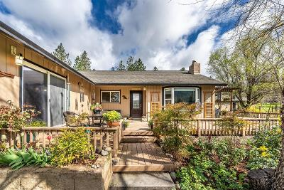Rogue River Single Family Home For Sale: 9393 E Evans Creek Road