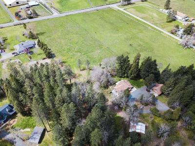 Rogue River Single Family Home For Sale: 6219 East Evans Creek Road