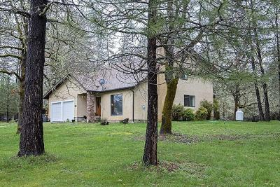 Josephine County Single Family Home For Sale: 2802 Russell Road