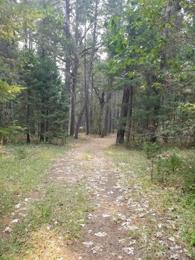 Cave Junction Residential Lots & Land For Sale: 6249 Caves Highway