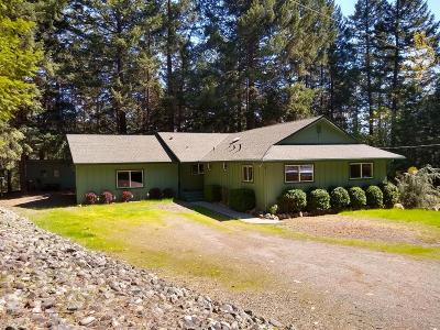 Single Family Home For Sale: 330 Tunnel Creek Road