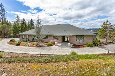 Merlin, Sunny Valley, Wimer, Rogue River, Wilderville, Grants Pass Single Family Home For Sale: 465 Trollview Road