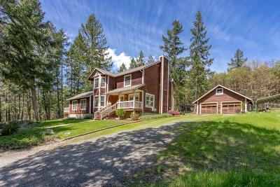 Jackson County, Josephine County Single Family Home For Sale: 17450 North Applegate Road