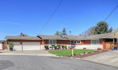 Merlin, Sunny Valley, Wimer, Rogue River, Wilderville, Grants Pass Single Family Home For Sale: 1216 NE Duane Drive