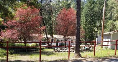 Grants Pass Single Family Home For Sale: 1688 W Jones Creek Road