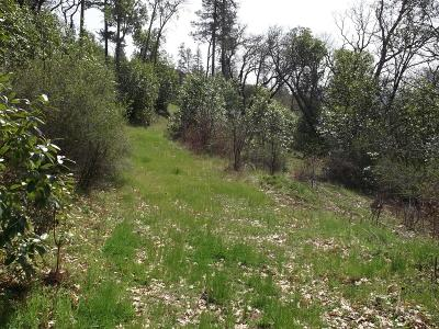 Rogue River Residential Lots & Land For Sale: 4862 North River Road