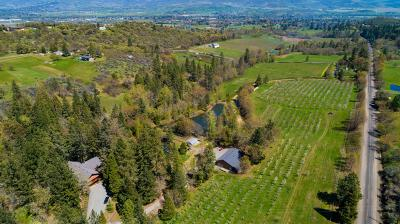 Medford Single Family Home For Sale: 7121 Dark Hollow Road