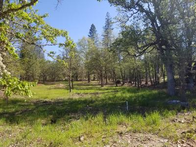 Merlin, Sunny Valley, Wimer, Rogue River, Wilderville, Grants Pass Residential Lots & Land For Sale: 176 Witness Way