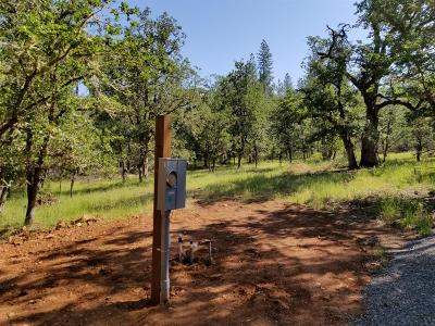 Merlin, Sunny Valley, Wimer, Rogue River, Wilderville, Grants Pass Residential Lots & Land For Sale: 2134 E Evans Creek