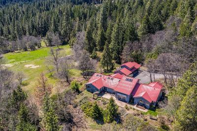 Ashland Single Family Home For Sale: 6111 S Old Hwy 99