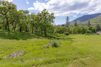Merlin, Sunny Valley, Wimer, Rogue River, Wilderville, Grants Pass Residential Lots & Land For Sale: TLs 1200 & 1300 Rogue River Highway