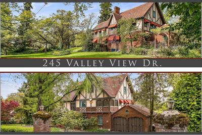 Single Family Home For Sale: 245 Valley View Drive