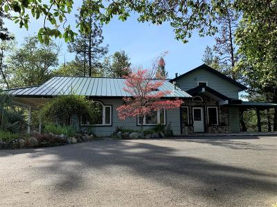 Single Family Home For Sale: 8500 Upper Applegate Road