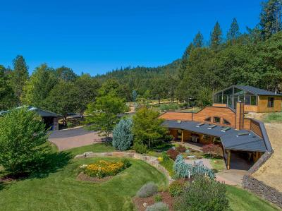 Rogue River Single Family Home For Sale: 19300 Evans Creek Road