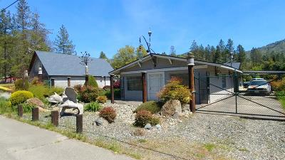 Josephine County Single Family Home For Sale: 5091 Williams Highway