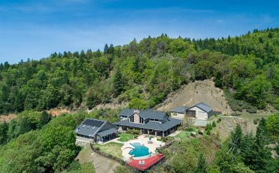 Merlin, Sunny Valley, Wimer, Rogue River, Wilderville, Grants Pass Single Family Home For Sale: 1091 Ingalls Lane