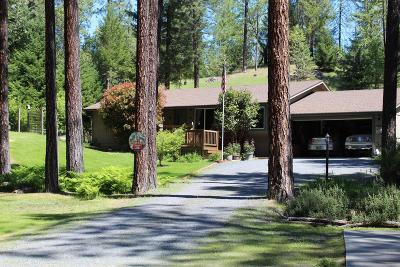 Rogue River Single Family Home For Sale: 4178 E Evans Creek Road