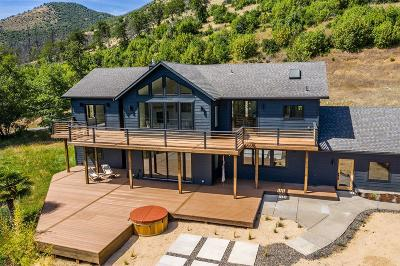 Gold Hill Single Family Home For Sale: 3562 N River Road