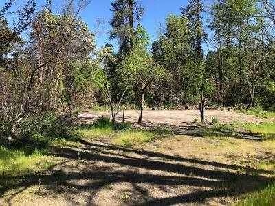 Residential Lots & Land For Sale: 116 Holton Creek Road