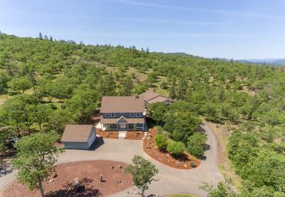 Eagle Point Single Family Home For Sale: 6974 Lost Creek Road