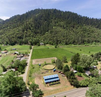gold hill Single Family Home For Sale: 5007 Rogue River Highway