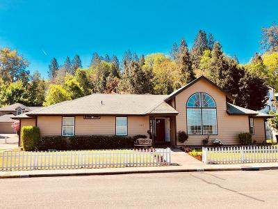 Merlin, Sunny Valley, Wimer, Rogue River, Wilderville, Grants Pass, Murphy, Wolf Creek, Hugo, Wonder Single Family Home For Sale: 1105 Wylie Lane