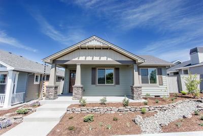 Medford Single Family Home For Sale: 3825 Shamrock Drive