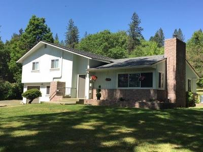 Merlin, Sunny Valley, Wimer, Rogue River, Wilderville, Grants Pass, Murphy, Wolf Creek, Hugo, Wonder Single Family Home For Sale: 2520 Upper River Road