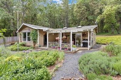 Josephine County Single Family Home For Sale: 5520 Riverbanks Road
