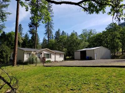 Jackson County, Josephine County Single Family Home For Sale: 180 Manzanita Drive