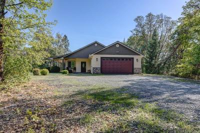 Merlin, Sunny Valley, Wimer, Rogue River, Wilderville, Grants Pass, Hugo, Murphy, Wolf Creek Single Family Home For Sale: 1095 Ingalls Lane