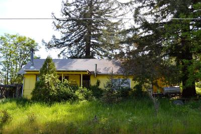 Merlin, Sunny Valley, Wimer, Rogue River, Wilderville, Grants Pass, Murphy, Wolf Creek, Hugo Single Family Home For Sale: 2161 Dowell Road